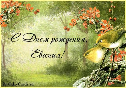 http://birthdaycards.su/wp-content/uploads/2012/01/otkrytka-s-dnem-rozhdeniya-evgeniya.jpg
