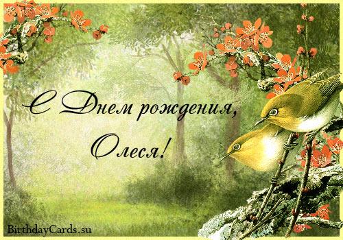 http://birthdaycards.su/wp-content/uploads/2012/01/otkrytka-s-dnem-rozhdeniya-olesya.jpg